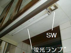 P1190004.JPG