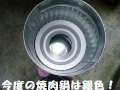 P6110051.jpg